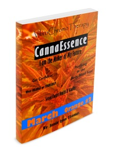orange-vct-book-side-view