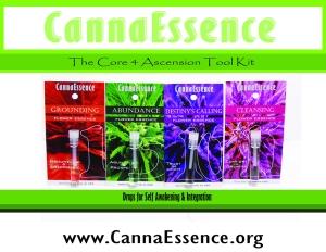 Drops for Self Awareness & Integration