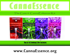 Core 4- wholesale bottles - CannaEnhancer kit - Drops for self a