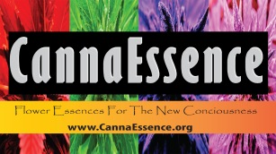 CannaEssence Core 4 Logo NEW FINAL